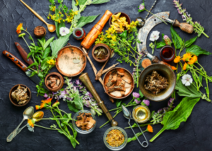 Spices And Medicinal Plants